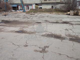 Teren asfaltat 30 ari, str. Petricani
