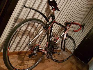 Bicicleta sportiva Focus Cayo