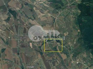 Teren agricol, 30000 ari, în apropiere bazin acvatic, Rădenii Vechi !