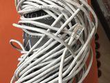 Cablu pentru retea (20m)