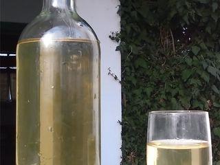 Vind vin alb de casă