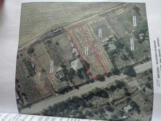 Продам земельный участок , в Максимовке .