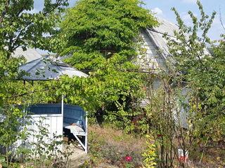 Продается  участок с домом, дача, вилла, vilă. Рядом озеро, лес.