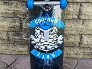 Профессиональный скейтборд деревянный от fish skateboard raven