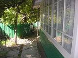 Calarasi, casa, str. Grigore Ureche, 34
