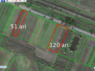 Lot 171 ari la Drumul Chișinău-Ungheni (Strășeni/Făgureni)