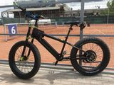 Fat bike prodeco rebel x