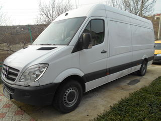 Mercedes Sprinter- Delfin 311