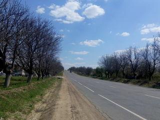 Продается 1 га 84 сотки земли с/х первая линия под любой бизнес Кишинев-Сынжера