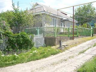Se vinde casă în Căușeni/preț negociabil