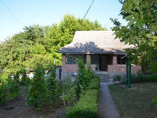 Vila in apropierea Vilei Drago - 25000 Euro (se poate si jumatate de vila)