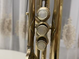 Vind trompeta selmer