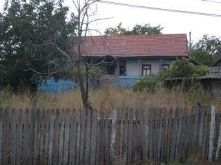 teren cu casa in Tipala
