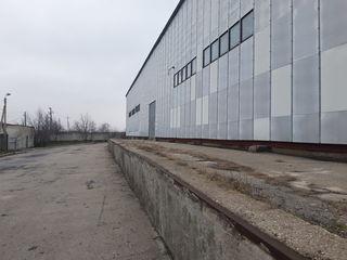 Склад в Чимишлии 1200 м2 сдаётся в аренду.