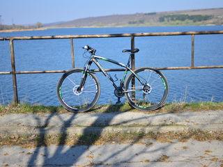 Vind bicicleta Bottecchia FX 116