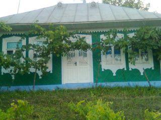 Casa, s. Fintinita, raionul Drochia