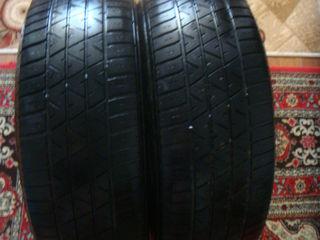rezina Michelin