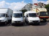 Servicii de transport &hamali