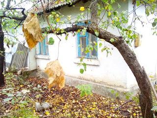 Продается полдома в самом центре села Октябрьского примарии Цамбула