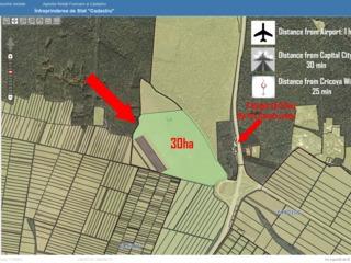 Оргеев Кодры 30га лесной массив(дуб 100%) !под строительство!
