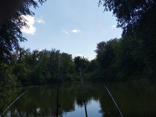 Срочно продается озеро или обмен на недвижимость в Кишиневе