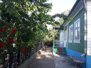 Casa Bacioi