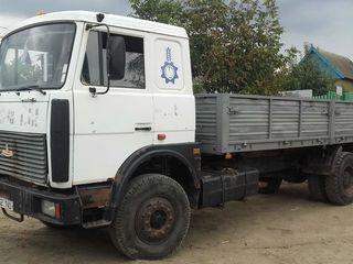 Maz 5336