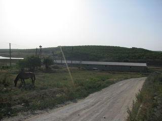 Ферма для содержания животных