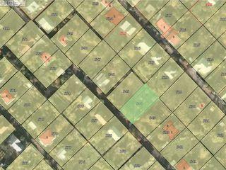 Lot de teren - Intovarasia Pomicola Truseni