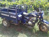 Viper LZX200GY-2