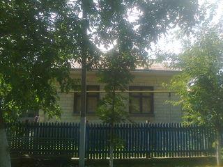 Продается дом.   г.Купчинь .Виктория 28