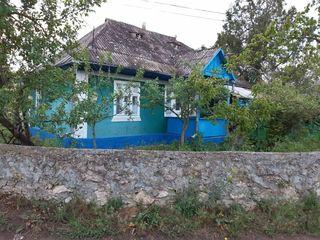 Casa satul Napadova, raionul Floresti, 200m de la riul Nistru. Loc Ideal pentru pescari si vinatori.