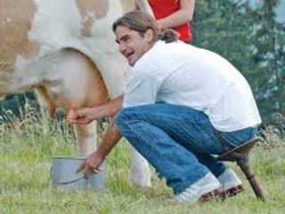 Открываем пункты по закупки молока у населения в селах.