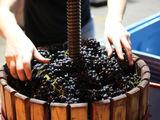 Вино красное, домашнее, без сахара и консервантов. Vin rosu, de casa, fara zahar si conservanti.