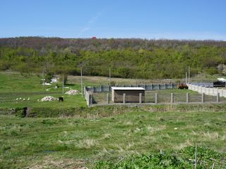 15 ari de teren pt construcrtie - Zona Ecologica - Prima linie - Hulboaca