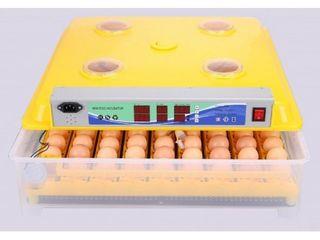 Incubator Ms-98 (98 oua )-livrare -garantie 1an-credit-agroteh