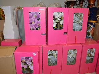 Искусственные орхидеи Flori artificiale