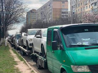 Transport la comanda si la devamare din lituania
