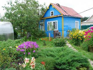 Vom închiria o cabană sau o casă mică în Сниму на лето небольшую дачу или дом в пригороде Кишинева.
