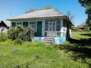 Casa cu gradina in satul Varincau r.Soroca