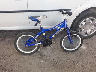Bicicleta copii  apise