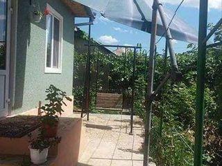 Umbrela de soare pentru terasă