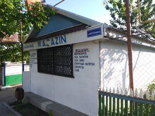 Magazin in Arenda s Recea, Riscani
