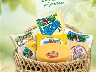 Молочная продукция для пекарни и продаж.