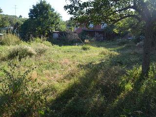 Teren pentru construcție + agricol, Trușeni, cu numai 10000 €