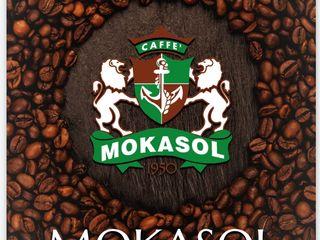 Mokasol Premium Quality