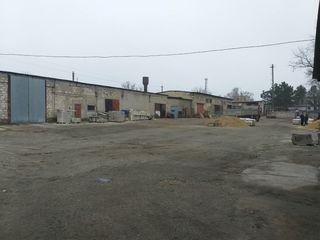 Производственно-складской комплекс. База строительных материалов.
