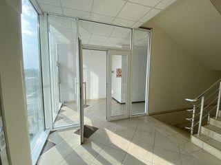 Сдаю 160m2-315m2 под бизнес, офис  на Рышкановке возле McDonald's  !Первая линия!