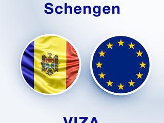 Asigurari - pentru consulatul, ambasada Poloniei, Pregatirea dosarului, Consultatii, Programari