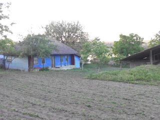 Хороший участок с домом у Днестра в Oxentia